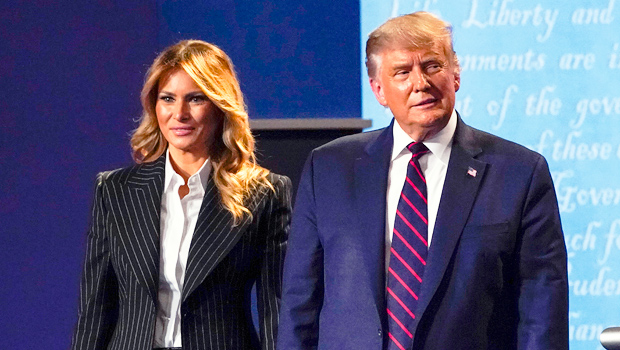 Sophia Bush & More Stars React To Trump's COVID Diagnosis After He Downplays Virus: Is It Still A 'Hoax'?