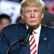 Trump Touts Unproven Therapy as COVID 'Cure'