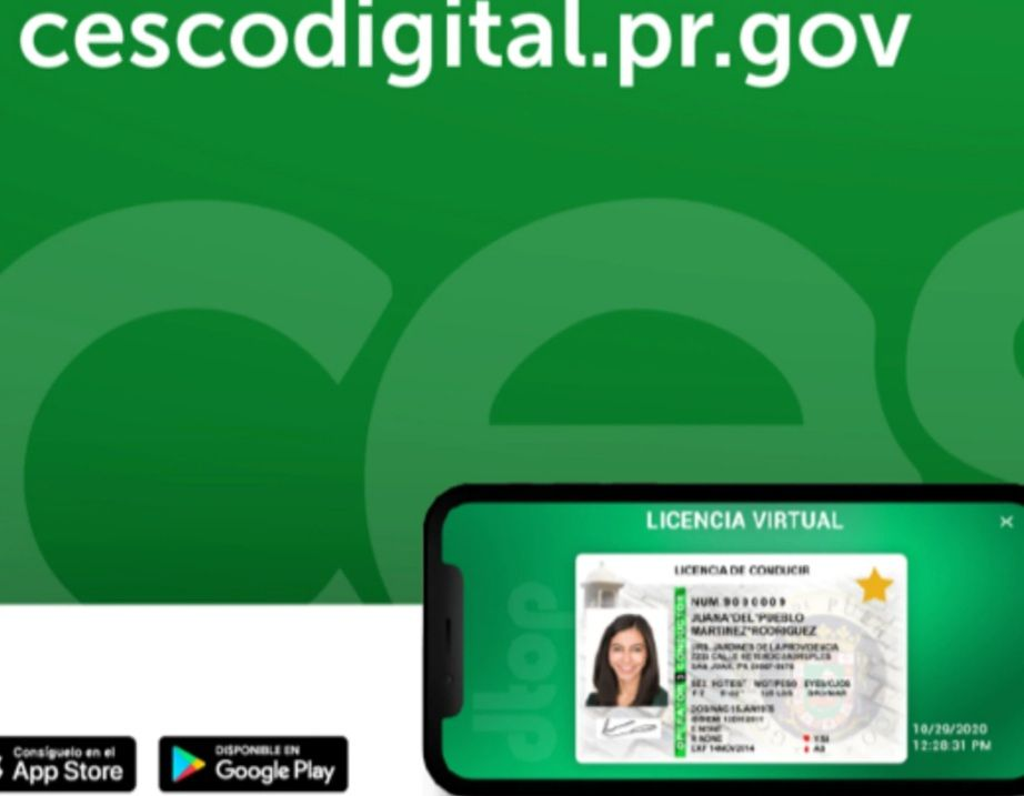 Virtual driver's license issuance is just around the corner in Puerto Rico; governor signs the law | The NY Journal