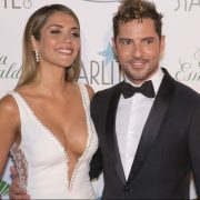 With a transparent dress, David Bisbal's wife, Rosanna Zanetti, showed off her beauty and pregnancy | The NY Journal
