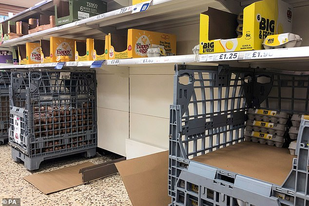 Boxes of eggs are bare after customers panic buy items before England's national lockdown
