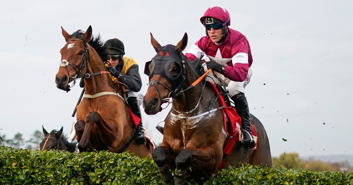 Retirement talk from Tiger Roll camp after Cheltenham flop