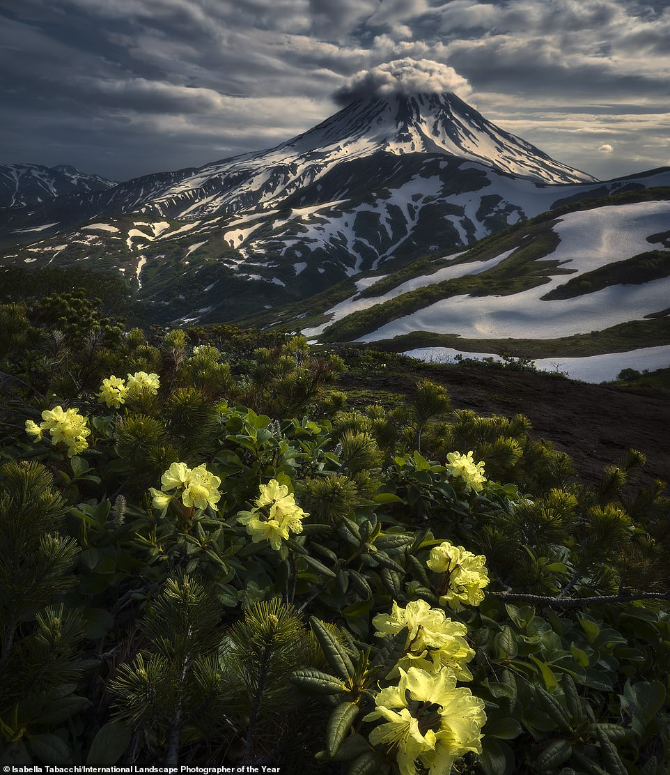 Italian photographerIsabella Tabacchi took third place in the International Landscape Photographer of the Year contest. This beguiling image of hers shows the Vilyuchik stratovolcano, located on Russia's Kamchatka Peninsula, garlanded by clouds and with yellow rhododendron in the foreground