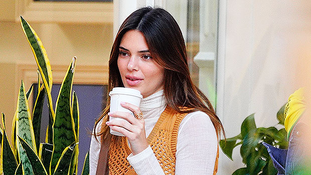 Kendall Jenner Enjoys Her Morning Coffee In A Sexy Robe & $2K Pair Of Louis Vuitton Slippers — See Pic
