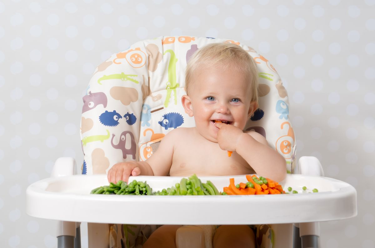 """What is """"Baby Led Weaning"""" and how does it affect the baby's nutrition and health   The State"""