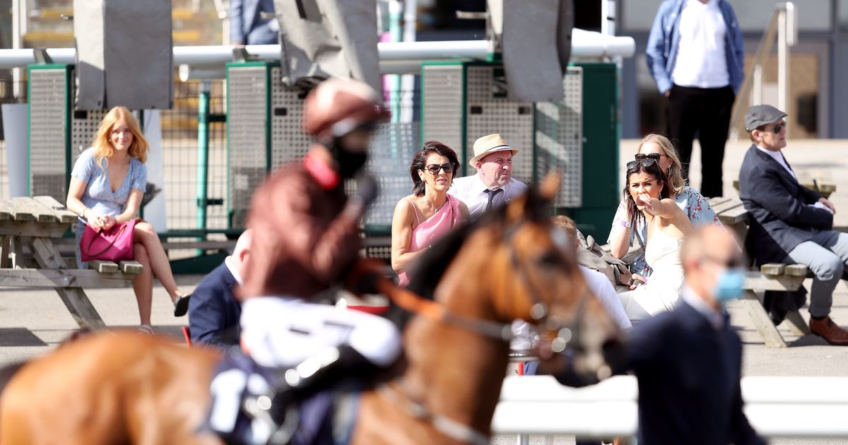 Fans given go-ahead to return to racecourses when lockdown ends