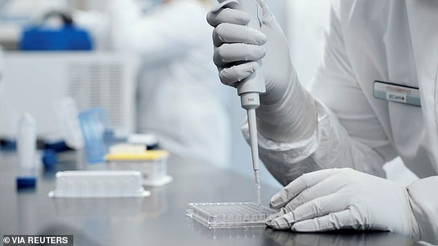 The companies, Pftizer, Moderna andAstraZeneca have all reported positive test results from their vaccine trials, with each found to be 90 percent effective or higher (file image)