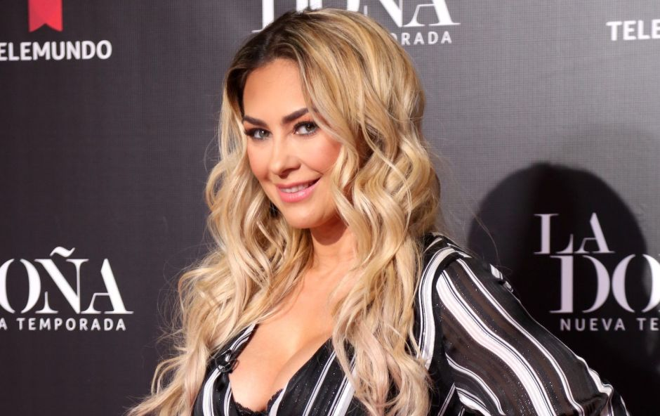 Aracely Arámbula would start a new legal battle against Luis Miguel | The NY Journal