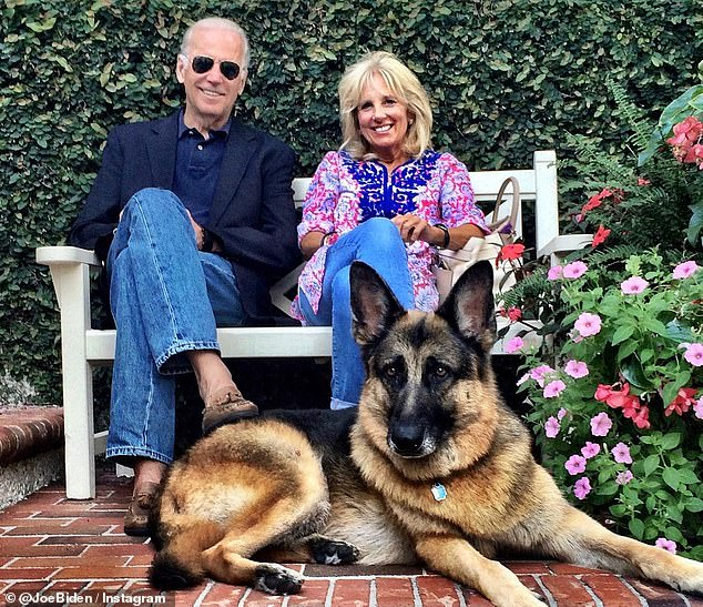 Bidens plan on bringing cat to the White House, will join two dogs Major and Champ at the residence