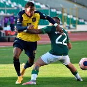 Gonzalo Plata, a pearl that begins to shine with the Ecuadorian senior team | The State