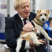 Janet Street-Porter trusts Boris Johnson's dog Dilyn more than PM