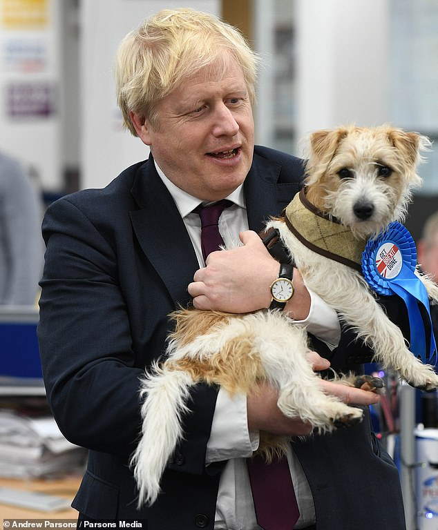 Boris Johnson is pictured with his pet dog Dilyn at Conservative Party HQ in December 2019