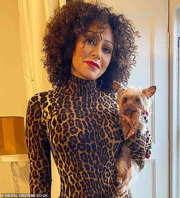 Mel B says she will go BANKRUPT if judge doesn't lower $500k ordered to Stephen Belafonte