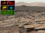 Microbes found in Earth's mist arid desert could guide scientists to uncovering life on Mars
