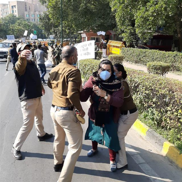 Protesting Punjab AAP MLAs detained from outside PM's residence in Delhi