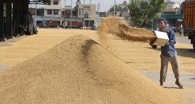 Rajasthan vows MSP on 22 crops, Punjab 2