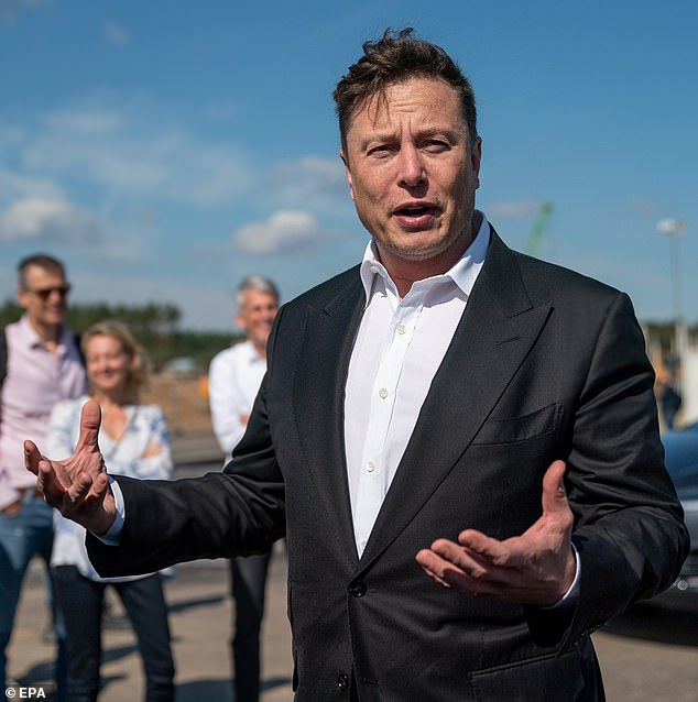 SpaceX and Tesla staffers say they check Elon Musk's Twitter every day for erratic comments