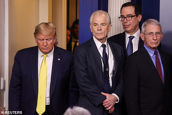Top Donald Trump advisor Peter Navarro claims president 'clearly' won the election