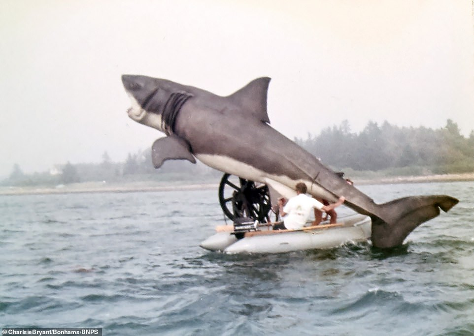 Unseen behind-the-scenes photos show Steven Spielberg's 25ft mechanical shark during filming of Jaws