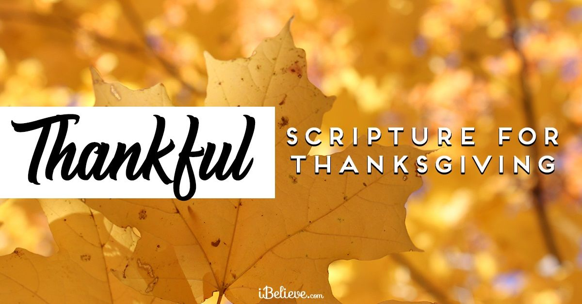 Thanksgiving Bible Verses to Reflect on This Year