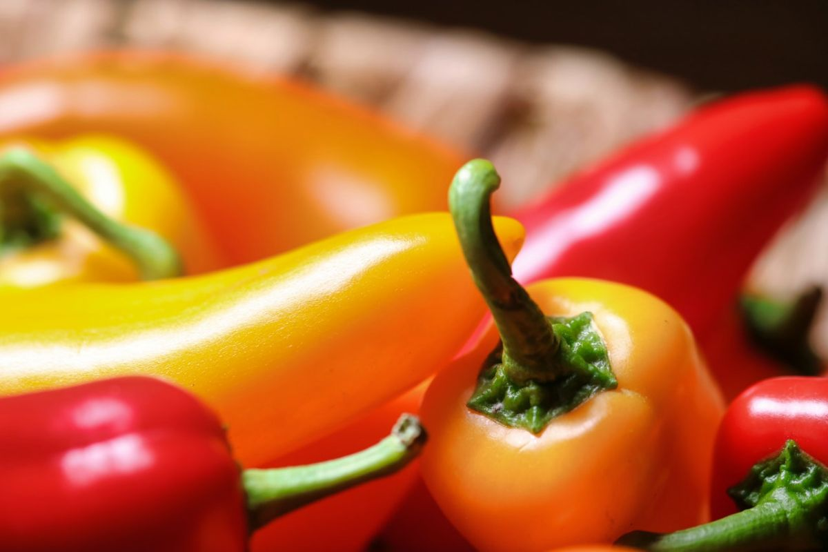 10 curious facts about chili that every Mexican should know | The State