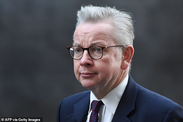 Yesterday, as anger grew about this potential new system, Cabinet Office Minister Michael Gove used a BBC interview to adopt a more sceptical tone. Above, Mr Gove pictured on Tuesday