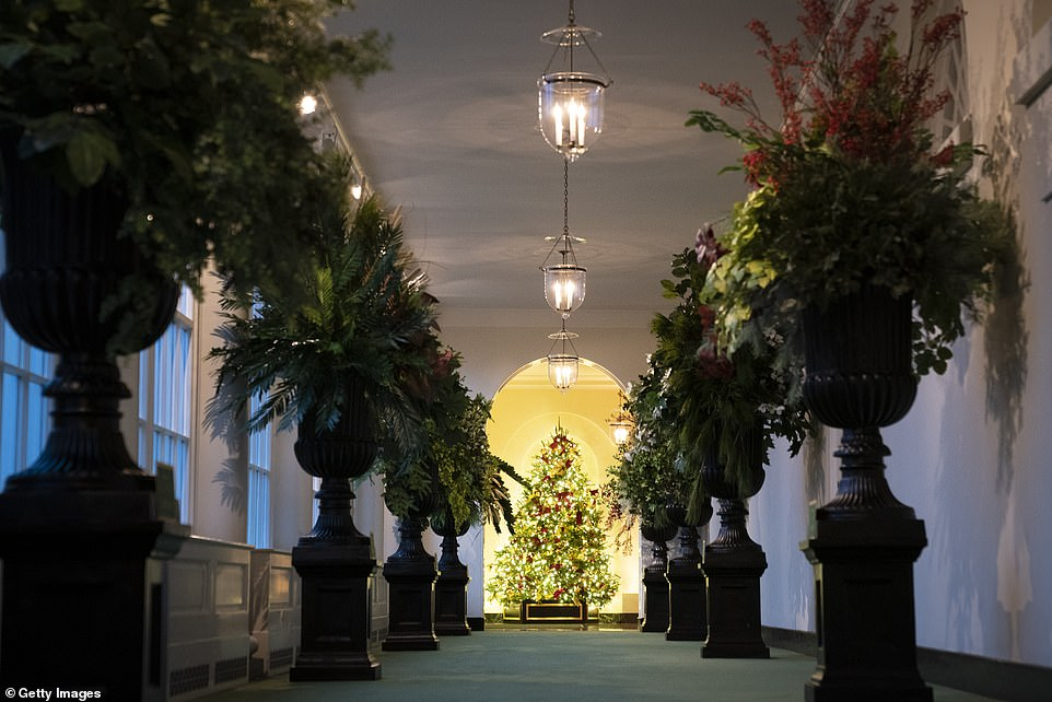 This year the East Colonnade, the site of last year's infamous red trees, has urns containing plants from across the US