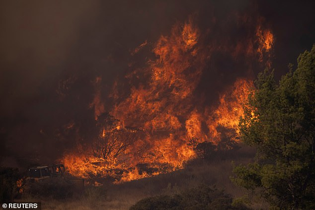 Rising temperatures are a contributing factor to wildfires which caused devastation in Australia, the Amazon and California (pictured) this year, along with other locations