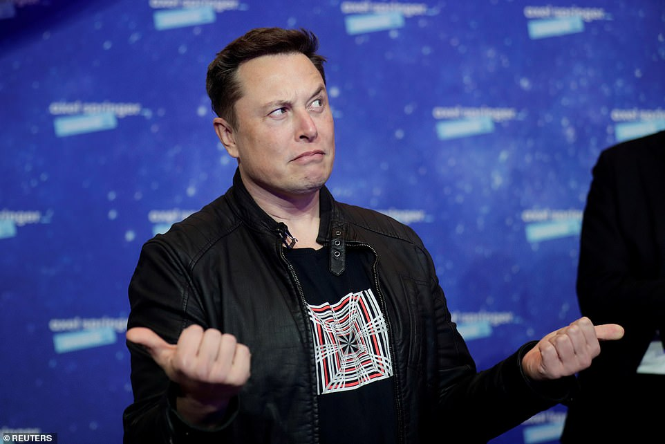 Musk had suggested the high-altitude test flight could end in a crash - and he was right