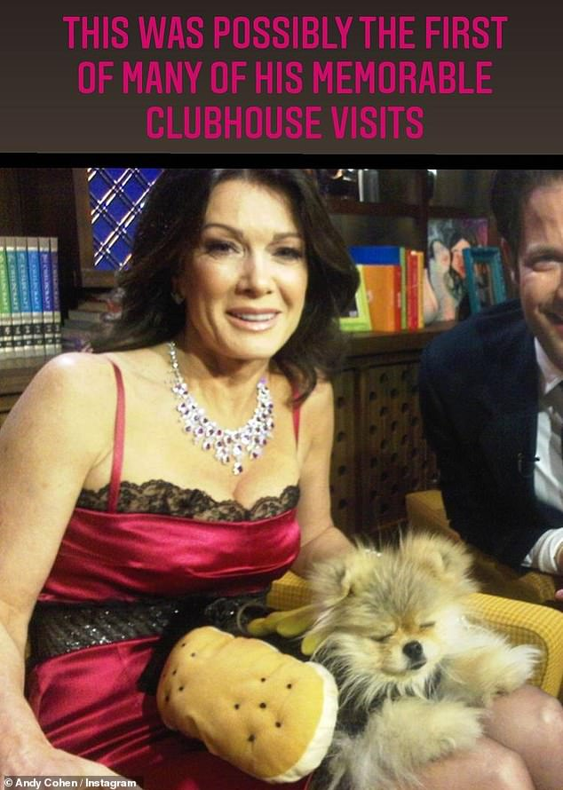 Coming soon: Vanderpump'sfoundation and rescue center will be the subjects of the upcoming reality series Vanderpump Dogs, a Vanderpump Rules spinoff that will premiere on the NBCUniversal streaming platform Peacock