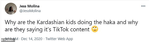 'That feels wildly inappropriate': Some fans were not comfortable with the traditional and culturally significant dance being used for TikTok content