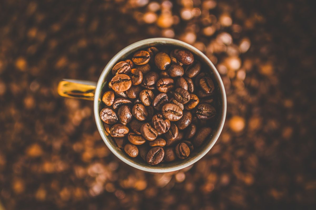 How to prepare a gourmet coffee without leaving home | The State