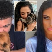 Katie Price 'devastated' as petition calls for her to be banned from having pets