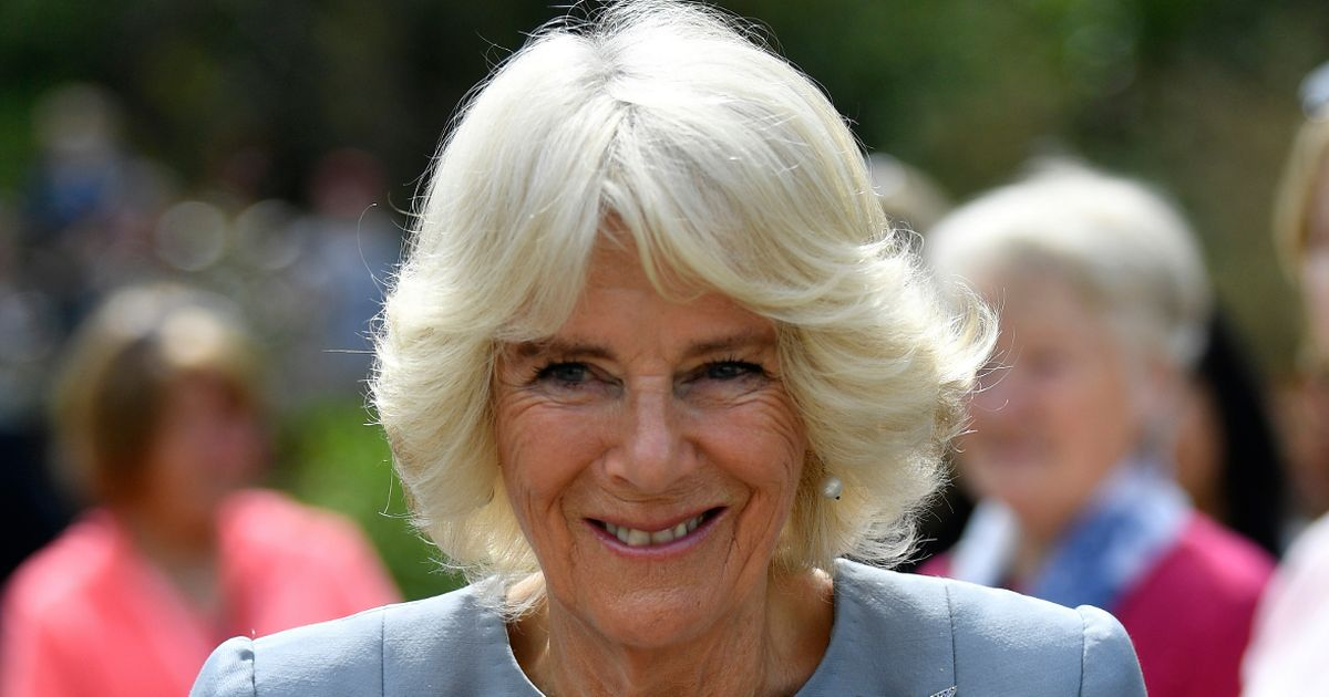Camilla will appear on Strictly final after voting for her favourite each week