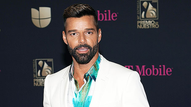 Ricky Martin Shares Rare Pic Of Baby Renn, 14 Months, His Youngest Son — See Photo