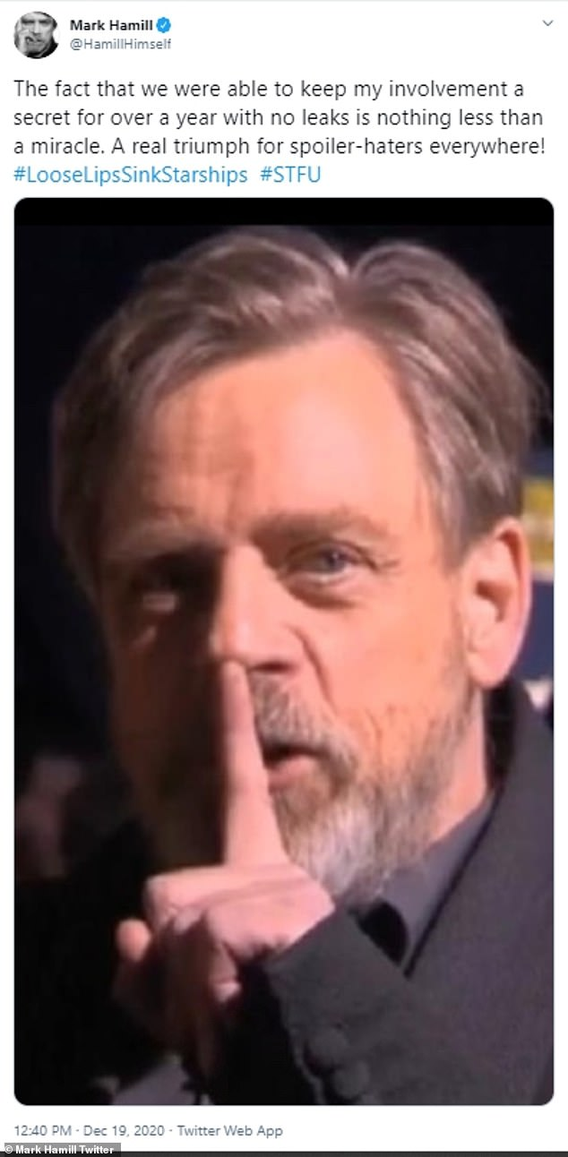 Secret: 'The fact that we were able to keep my involvement a secret for over a year with no leaks is nothing less than a miracle,' Hamill said