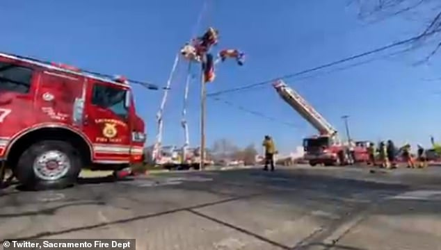 Sacremento's Fire Department tweeted a photo of the daring rescue of 'Santa' after his 'sleigh'- a 'hyper light' aircraft, got tangled in powerlines on Sunday