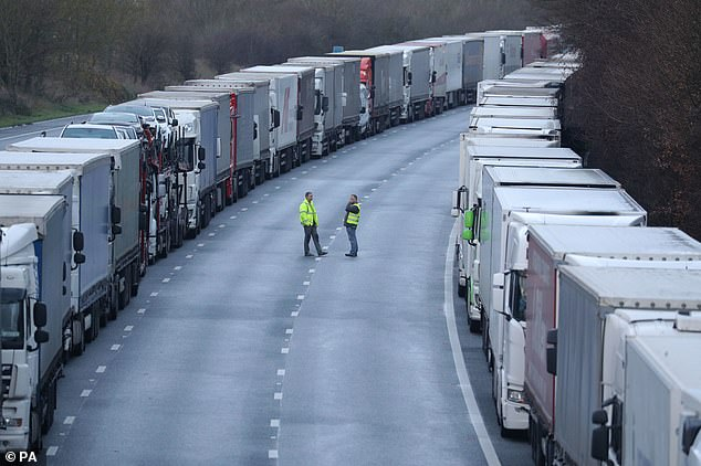 The French government has pledged to 'resume movement' as soon as possible, with the Port of Dover saying inbound lorries are now coming into the UK