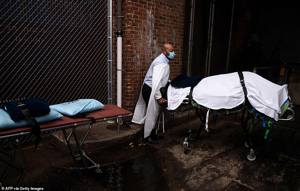 Pictured,Maryland Cremation Services transporter Reggie Elliott brings the remains of a Covid-19 victim to his van from the hospital's morgue in Baltimore on Christmas Eve.There have been an average of 2,506 daily deaths reported this month