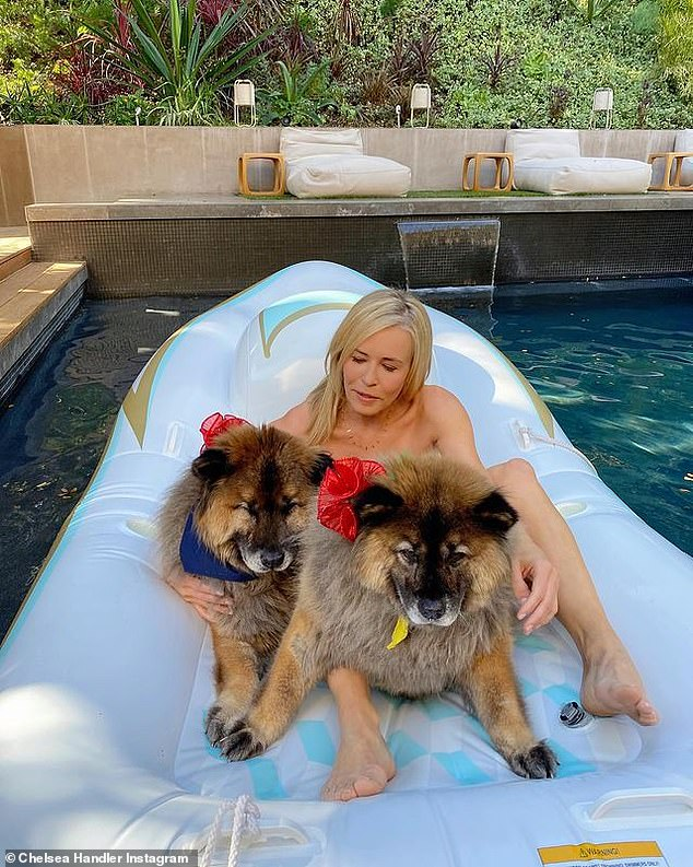Best buds: For the photo, the comedian, 45, lounged atop a giant pool floaty, while her beloved dogs Bert and Bernice rested at her feet
