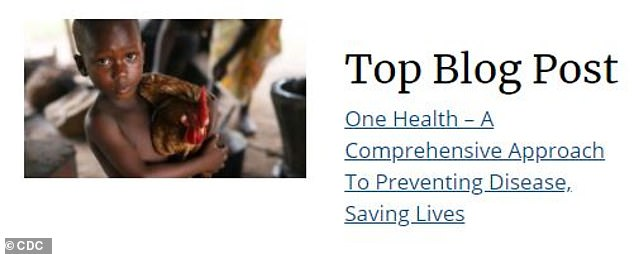 The most read blog post - how to best approach preventing disease