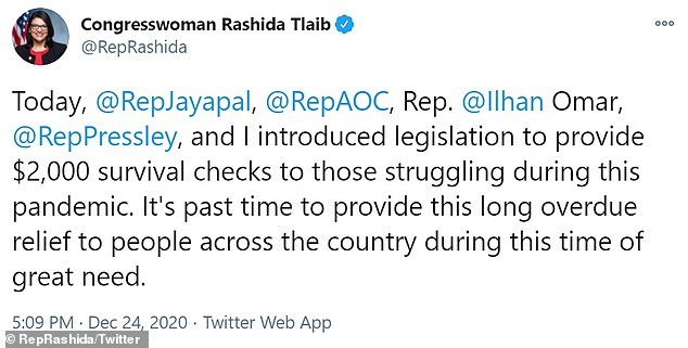 Tlaib released a statement on her Twitter account on Friday calling for the direct payment of $2,000 'survival checks' to Americans