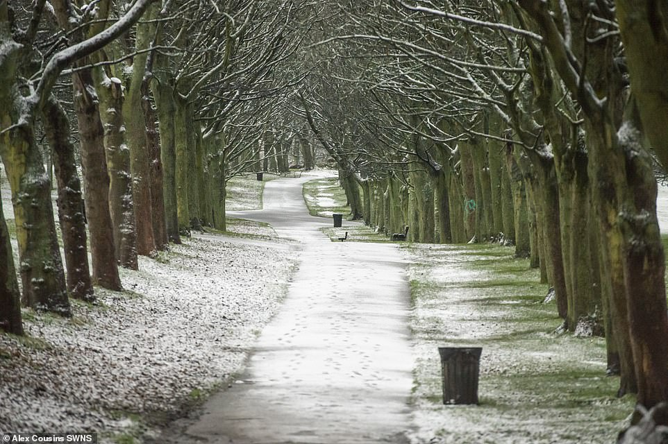 Snow has settled on the ground in Leeds this morning with more flurries expected over the next few days