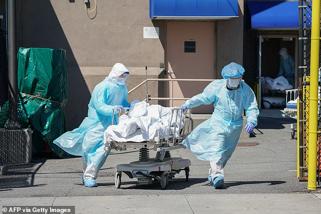 On Tuesday, New York City surpassed 25,000 deaths linked to coronavirus, a grim new milestone. Pictured, bodies are moved to a temporary morgue in Brooklyn