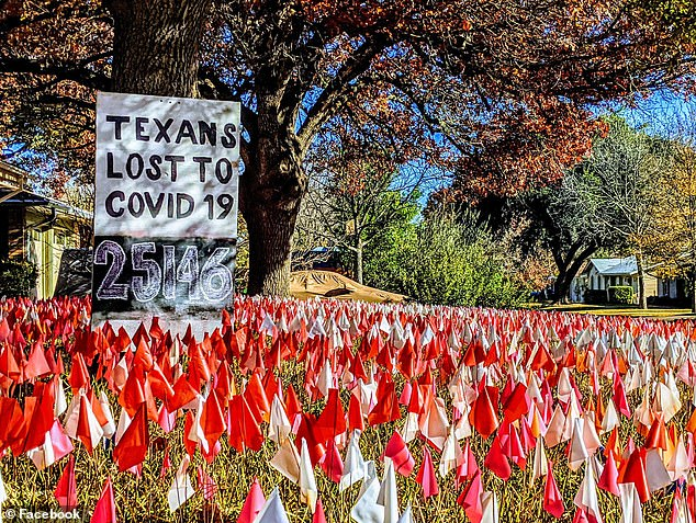 Austin artist plants 25,000 flags in his yard to remind neighbors of Texas COVID-19 deaths