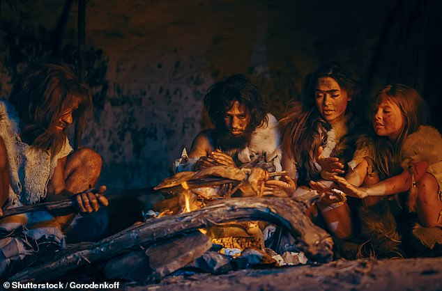 Early humans may have survived harsh winters more than 400,000 years ago by HIBERNATING