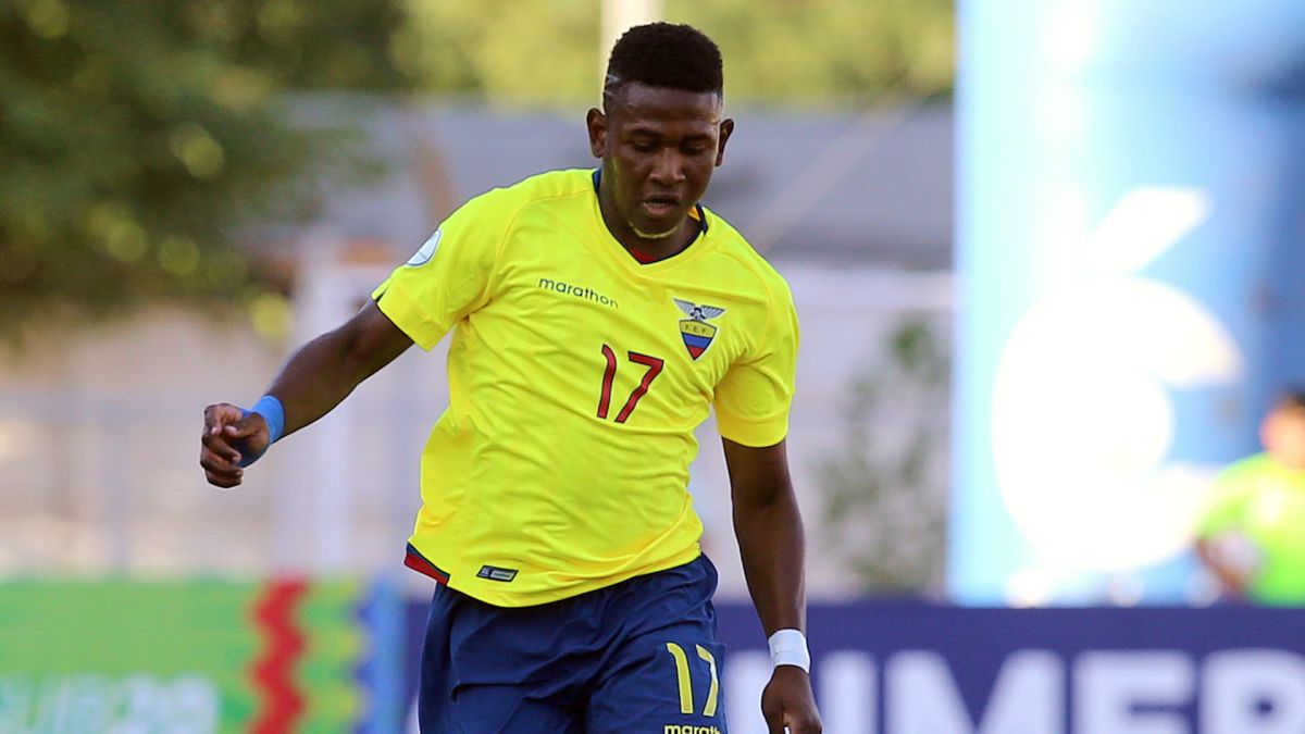 """Ecuador will have six """"foreign"""" reinforcements for friendlies against Colombia 