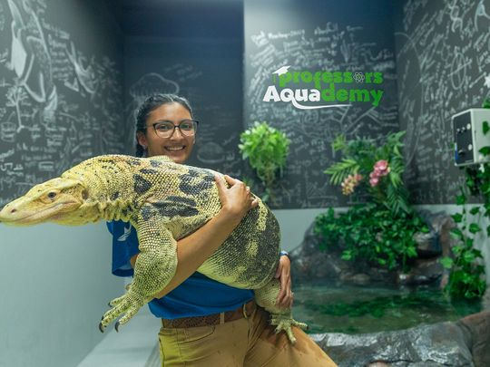 Here's your chance to meet the 'Professor' at the aquarium in Abu Dhabi