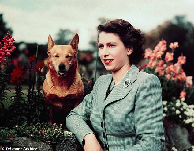 How Her Majesty ordered a gravel path to be tarmacked over – because it hurt her corgi's paws