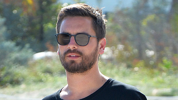 How Scott Disick Feels About A Serious Relationship With Amelia Hamlin Amid 'Flirty' New Romance